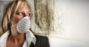 dohos szag eltüntetése
